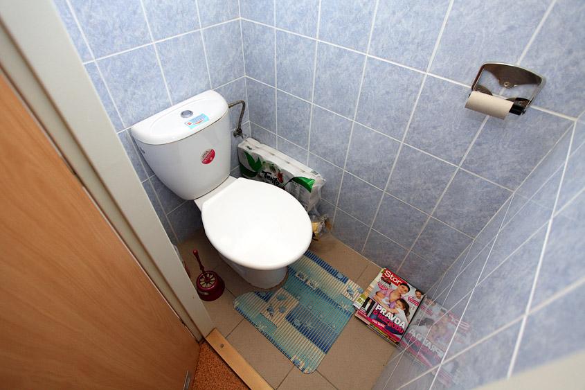 Дизайн туалета в общежитии